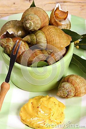 Whelks or sea snails, seafood