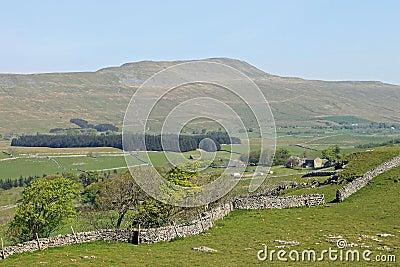Whernside, Three Peaks, North Yorkshire England