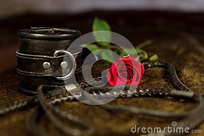 Whip, cuff and rose