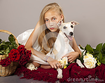 Whippet couple