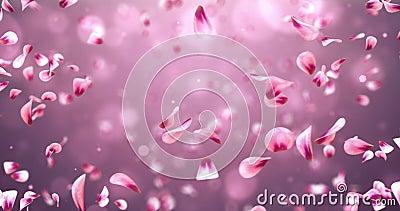Whirl Flying Romantic Red Pink Rose Sakura Flower Petals Background Loop 4k stock video