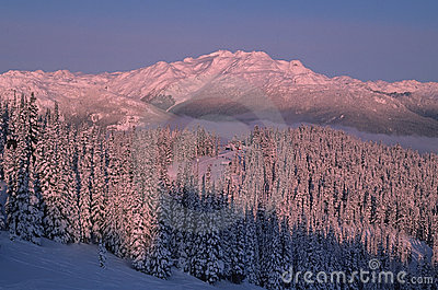 Whistler Mountain Site Of 2010 Winter Olympics Royalty Free Stock Photos - Image: 11557328
