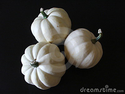 White Acorn Squash