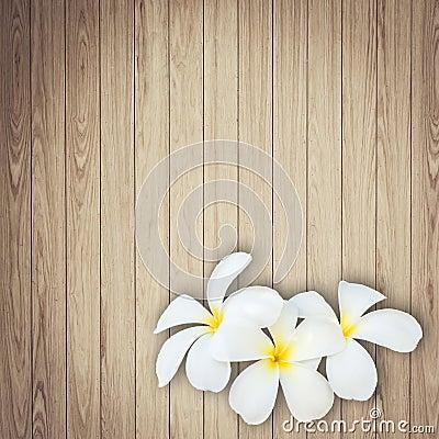 Free White And Yellow Frangipani Flower On Wood Background Stock Images - 55391464