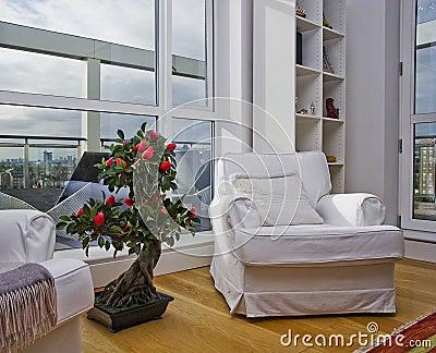 White armchair with bonsai tree
