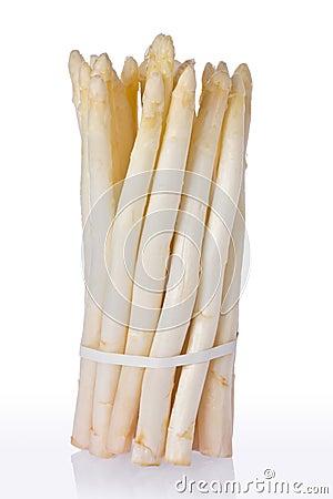 White Asparagus (Asparagus officinalis)