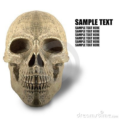 White background of skeleton