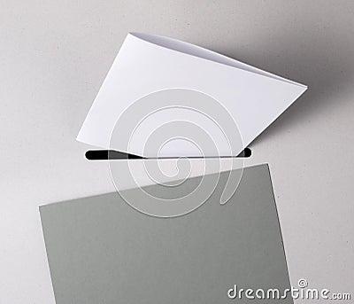 White ballot