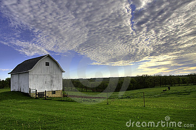 White barn with horses