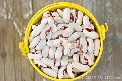 White beans in a bucket