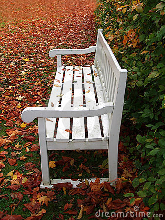 White bench in park