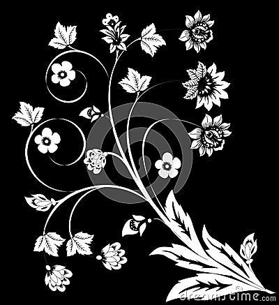 White on black flower curls