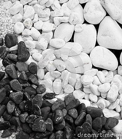 White and black pebble stones
