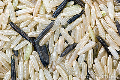 White and black uncultivated rice (macro)