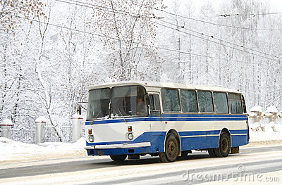 White and blue bus