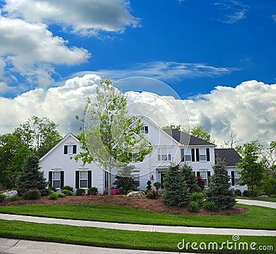 White Brick Suburban Home