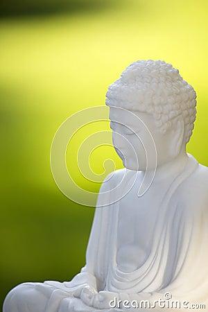 Free White Buddha On Green 02 Royalty Free Stock Photos - 17872378
