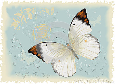 White butterfly in the blue