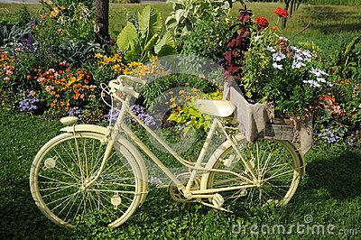 White Bicycle With Flowers
