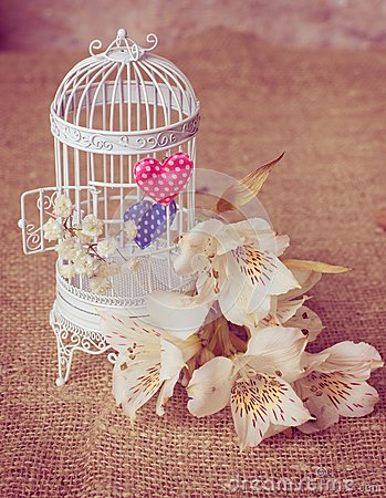 White cage with freesias and valentines