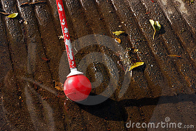 White Cane in Puddle