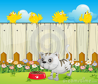 A white cat with a dog food and four yellow birds
