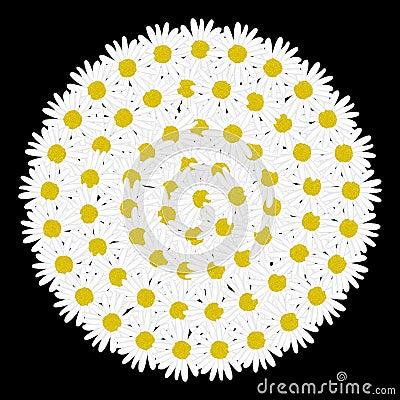 Free White Circle Frame Shaped Daisy Flower Stock Images - 49518794
