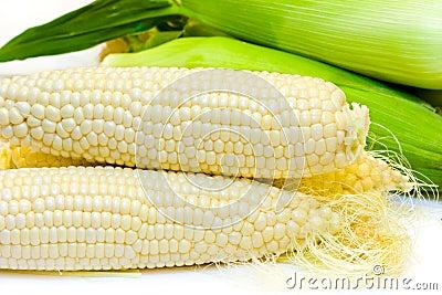 White corn