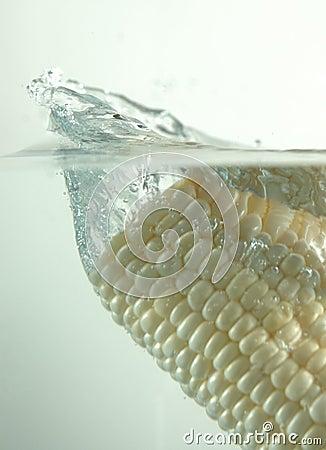 White corn splash,
