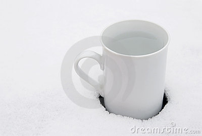 White cup in snow