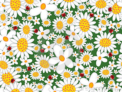 White daisies and ladybugs