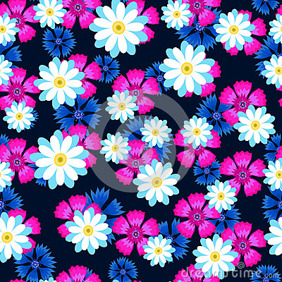 Free White Daisies,pink Carnation And Blue Cornflowers Royalty Free Stock Photos - 97426268