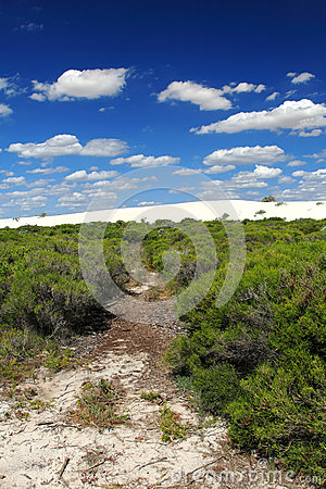 White Desert,Nambung National Park,South Western