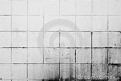 White Dirty Brick Wall