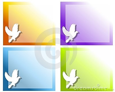White Dove Flying Backgrounds