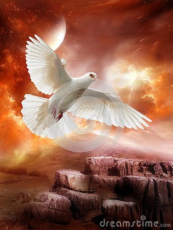 Free White Dove, Peace, Hope, Love, Alien Planet Royalty Free Stock Images - 129785529