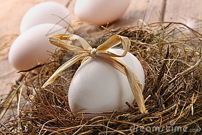 White egg with straw bow in nest