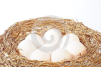 White eggs in golden nest