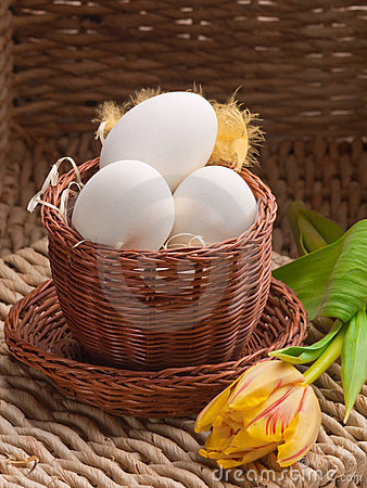 White eggs in small brown basket with tulips