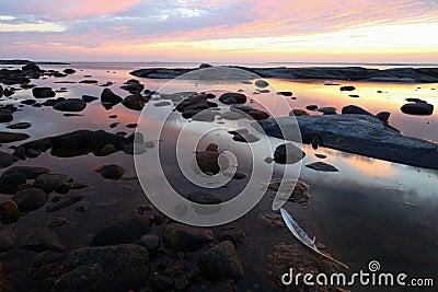 White Feather Sunset Rocky Coastline