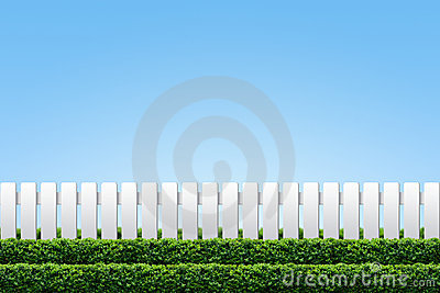 White fence and hedge