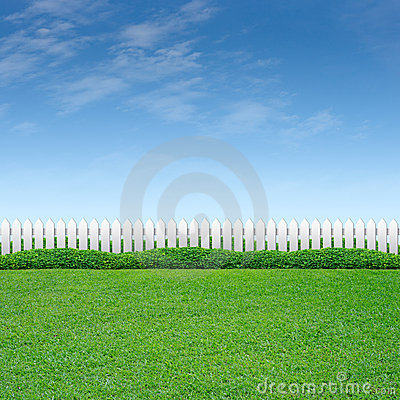 White Fence with shrub and grass