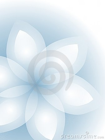 White Flower on Blue Pastel