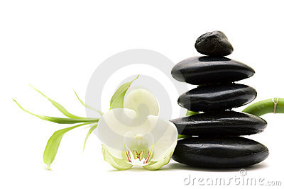 White flower, green bamboo and black stones