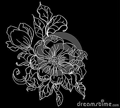 White flower over dark