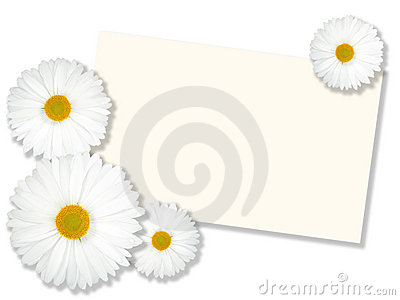 White flowers with message-card