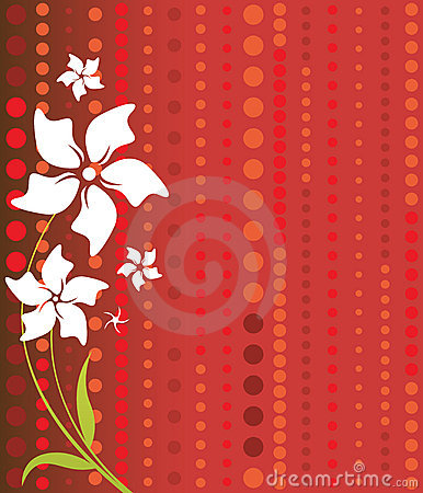 White Flowers on Red