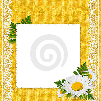 White frame with camomile and leaf