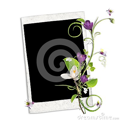 White frame with crocus and spring branch