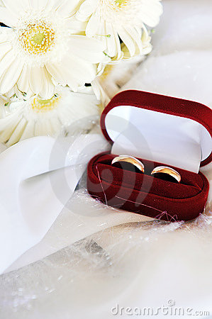 White gerbera and wedding rings